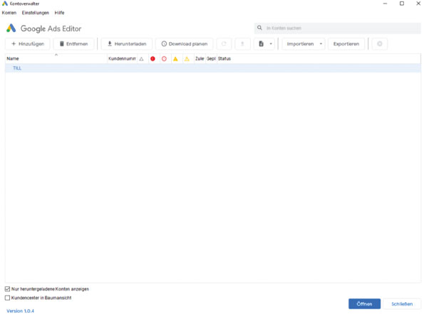 GoogleAdsEditor2